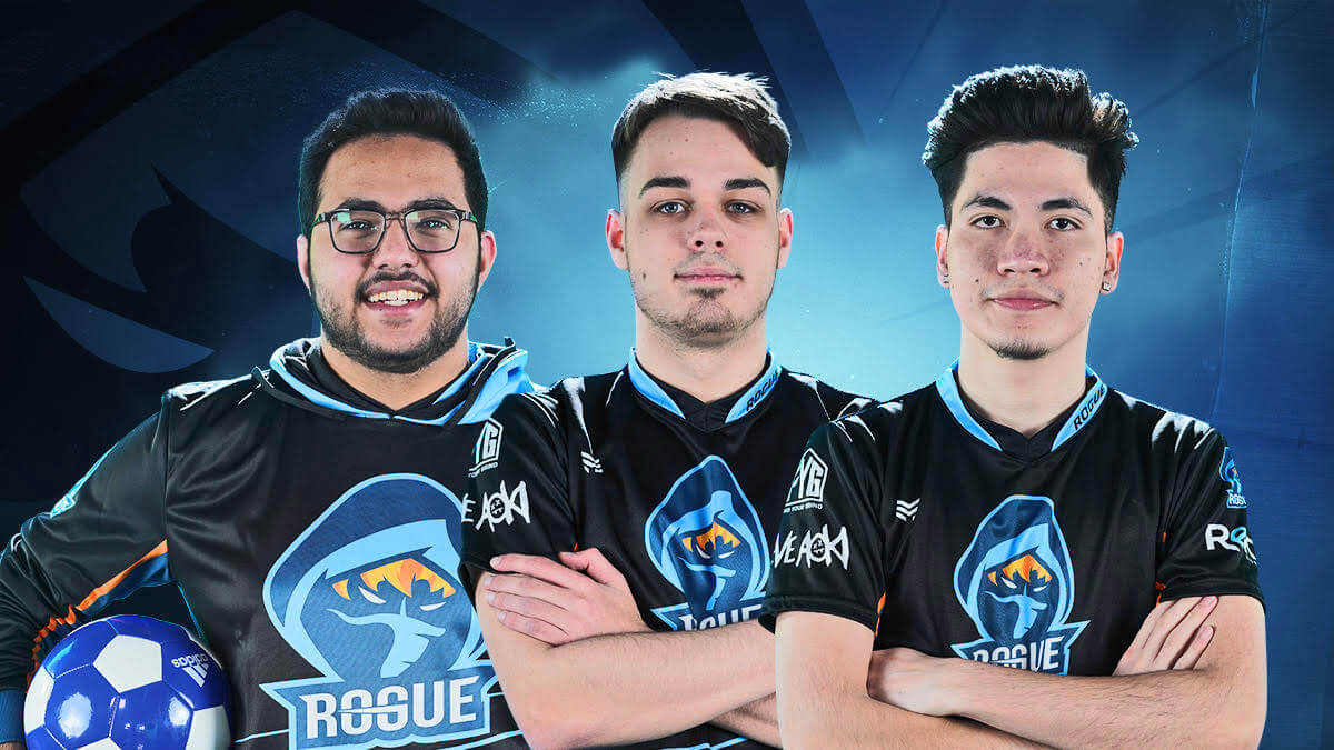 Rogue Gaming team