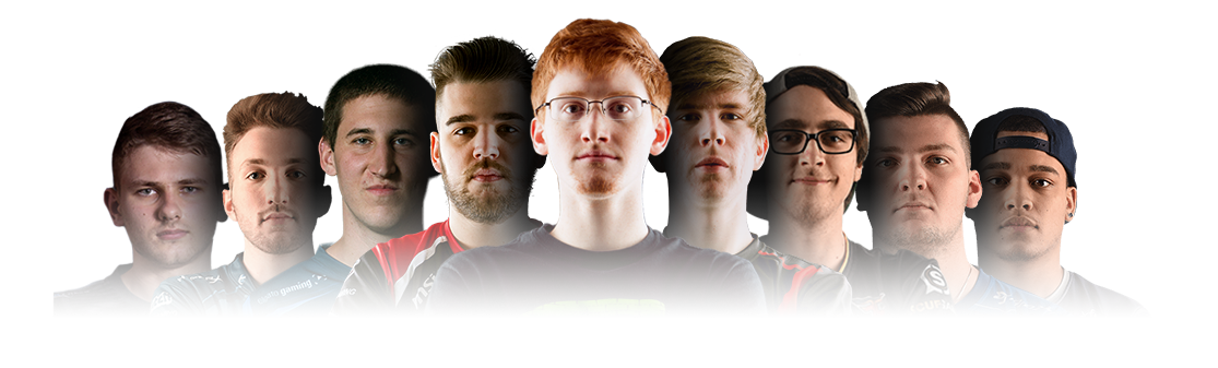 trusted by the pros team