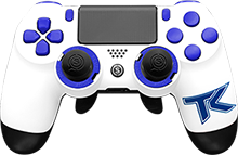 custom controller, team kaliber, playstation 4, esports